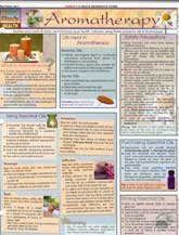 Dr. Power's Aromatherapy Quick Study Guide, available at the Aromatherapy School